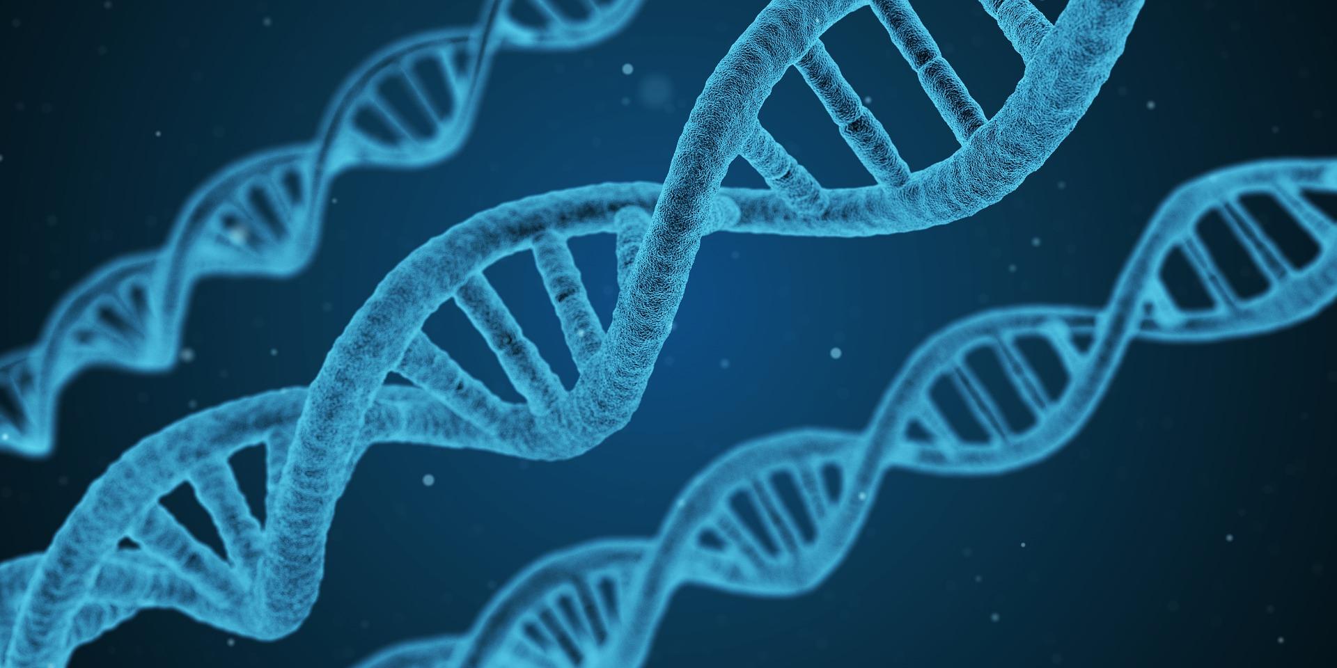 DNA sträng
